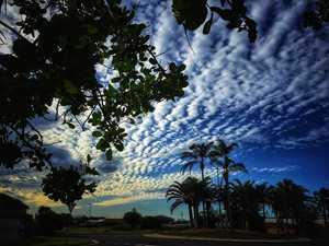 Blustery Bundaberg winds reach close to 50km/h