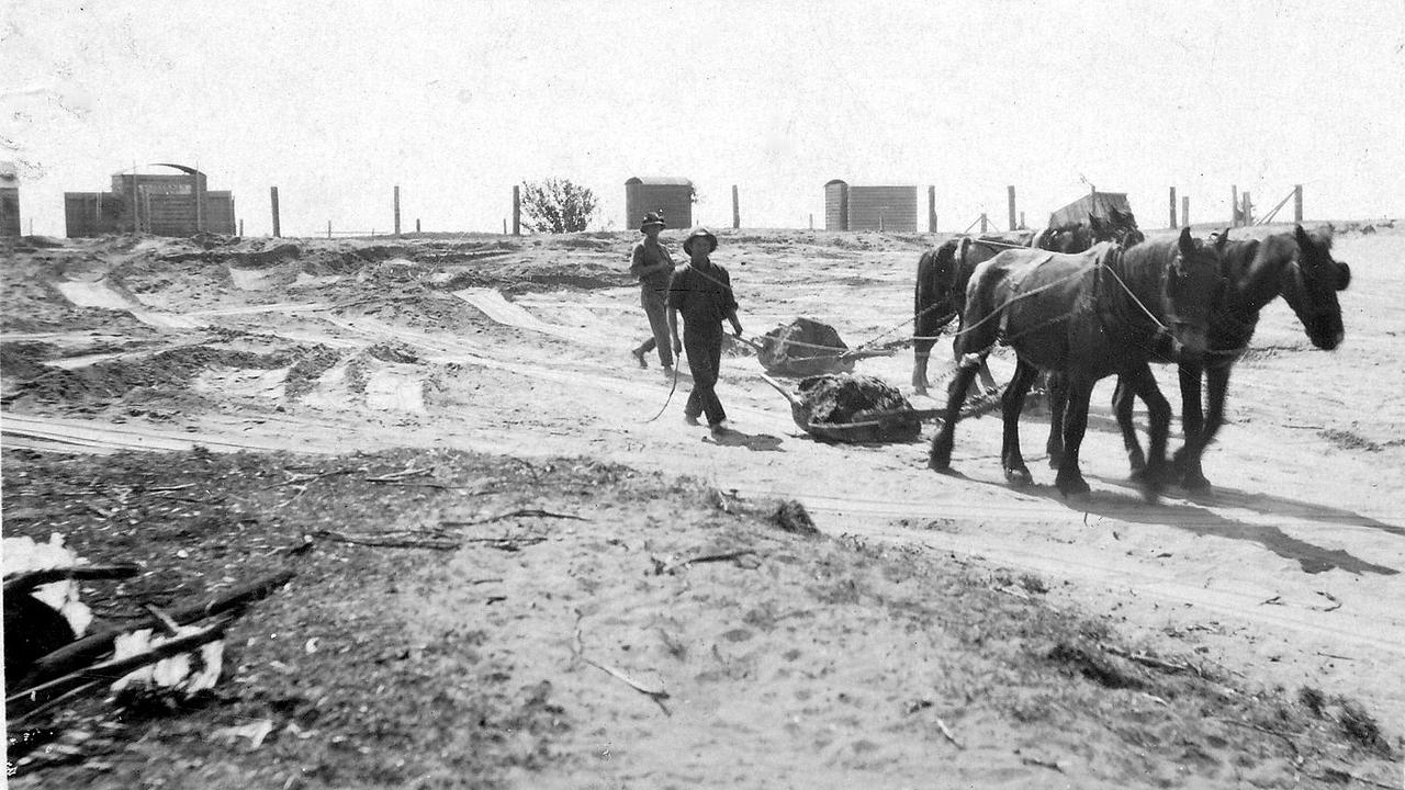 Horses were used to build the Pialba Oval (now Seafront Oval) in 1927.