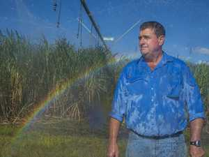 Water prices frozen to help growers survive pandemic