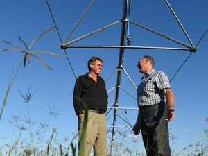 Irrigators spared water price hike, temporarily