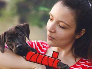Coles launches pet insurance with a twist