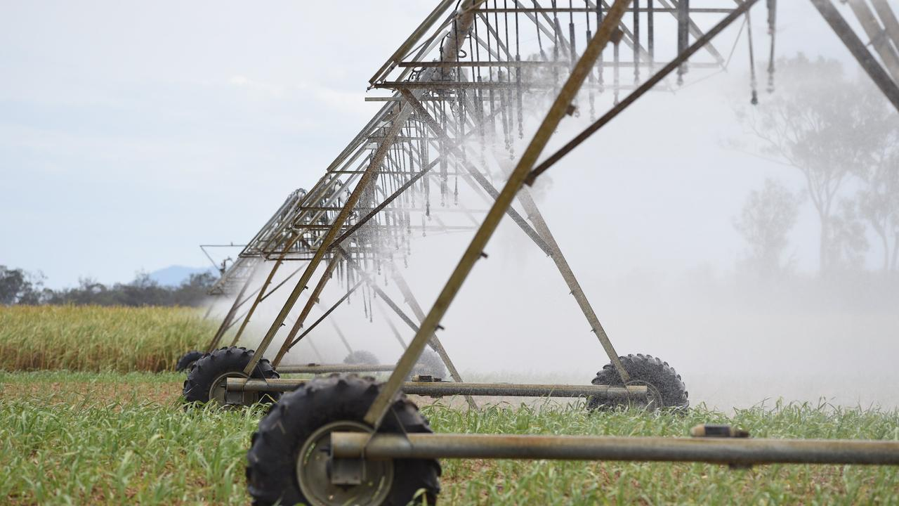 Cane crops being irrigated at Teddington near Maryborough.