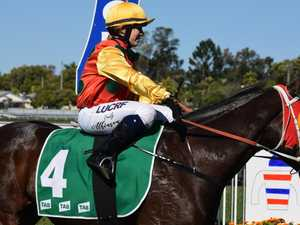 Glue sticks to his winning formula for Lismore