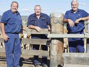 How Gympie firm is a big part of very different Ekka 2020