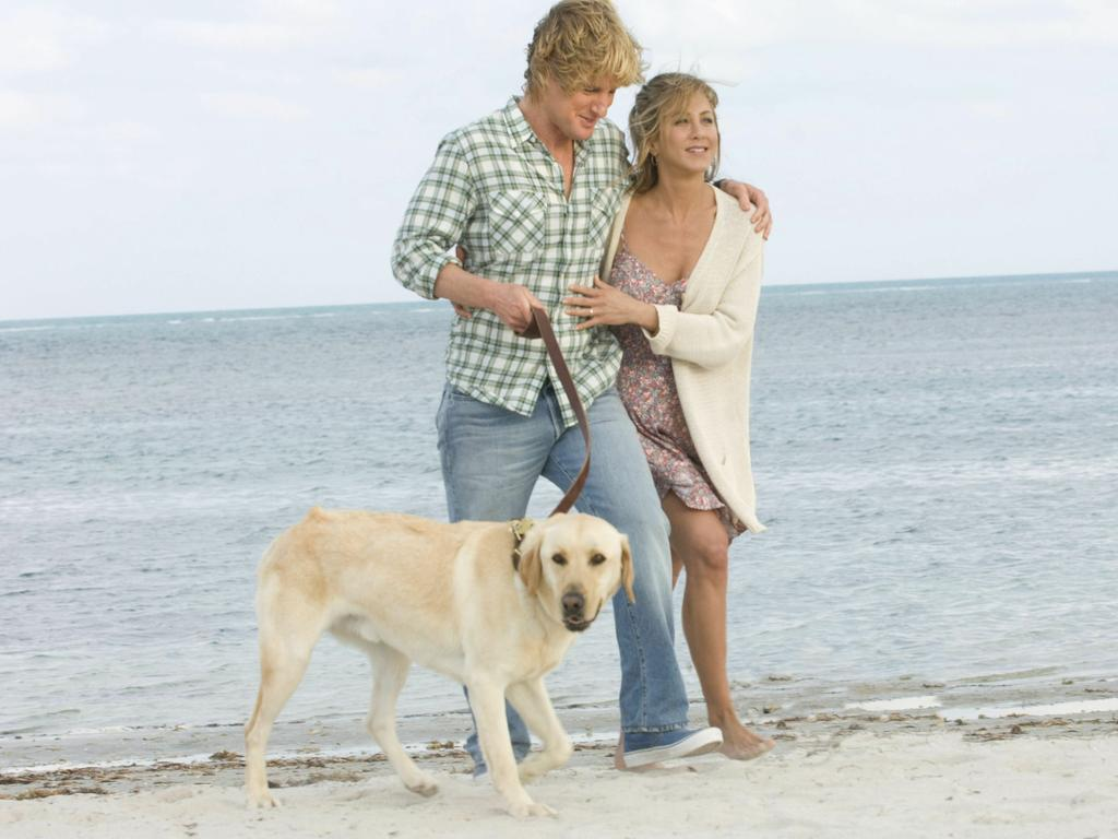Owen Wilson, Jennifer Aniston and 'Marley' in a scene from 2008 film 'Marley & Me'. Picture: Supplied
