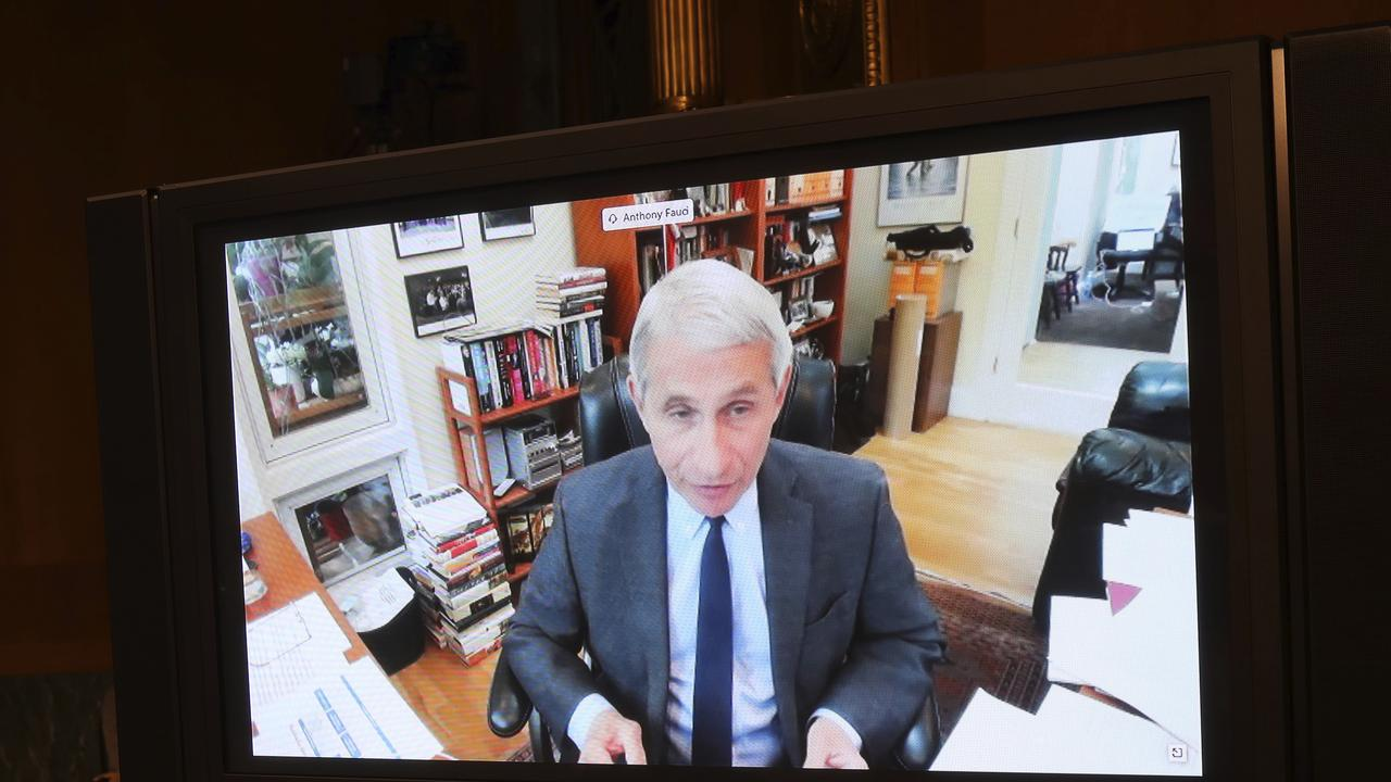 Dr Fauci appeared via video link. Picture: Win McNamee/AP