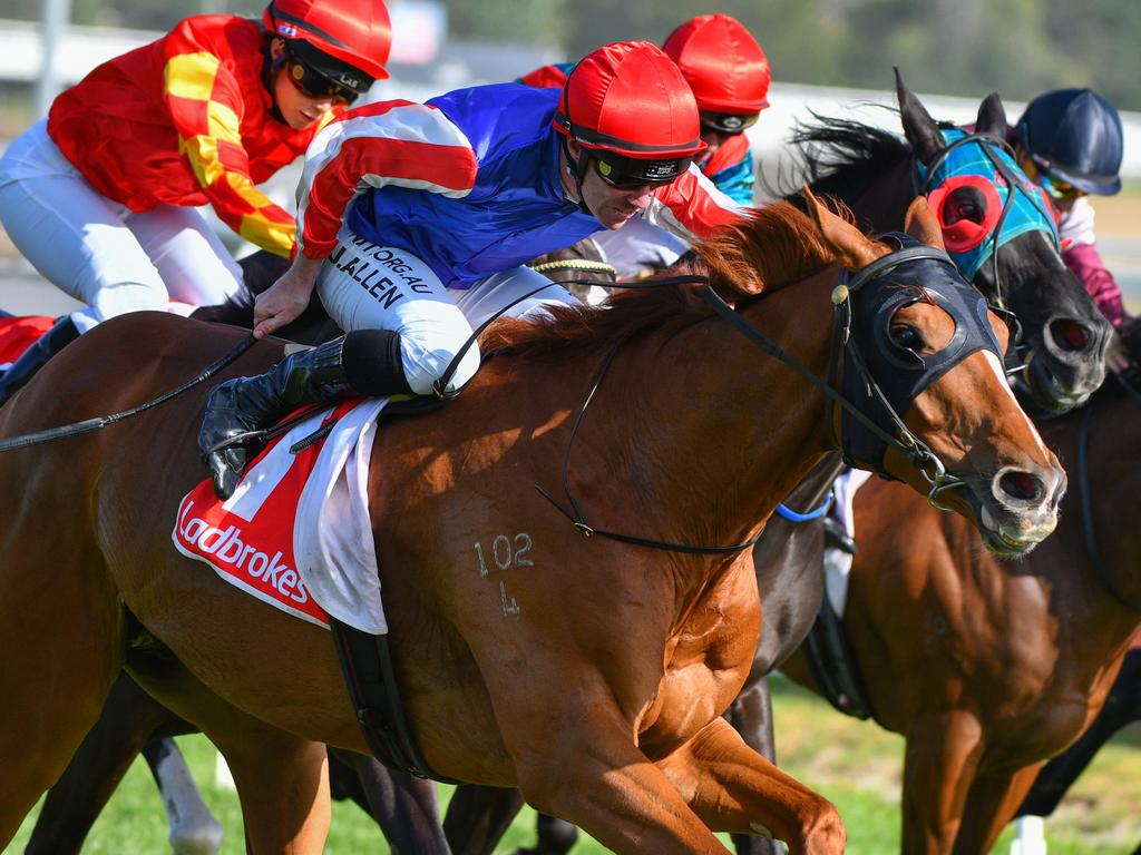 John Allen rides Skelm to victory at Caulfield in January.