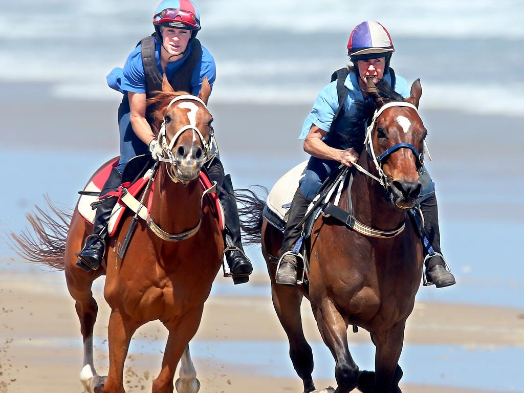 Skelm (left) can win a place in this year's Melbourne Cup if he wins on Saturday.