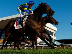 Tarzan takes strong home form into Listed race at Caloundra