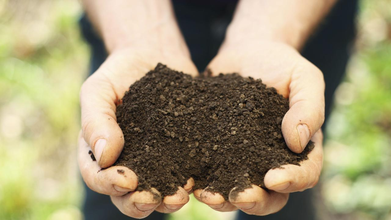 DIRTY DEAL: Nutrient rich soil is key to a rewarding harvest. Photo: File