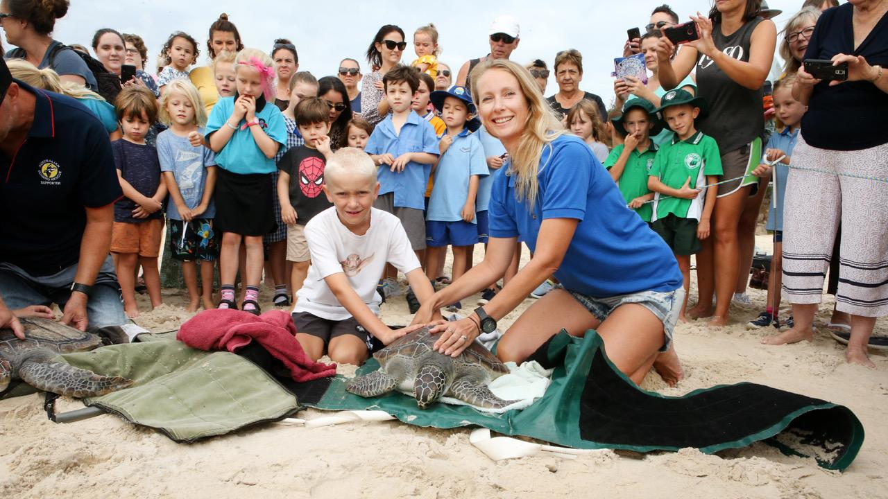 Preparing to release Whistler, the rescued sea turtle back into the ocean at Kingscliff Beach this week were Joey and Jen Slape in front of a huge group of 'well wishers'. Photo: WENDY POWICK