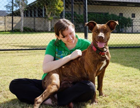 Sasha is a five-year-old American staffordshirt bull terrier.