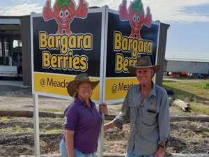New farm gate means easier access to berry good products