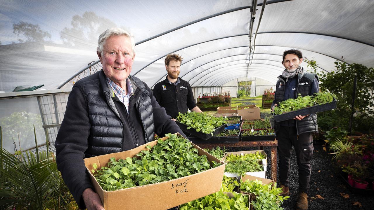 Tasmanian Gourmet Sauce Company co-owner Tim Barbour delivers seedlings to 24 Carrot Gardens team leaders Reuben Parker- Greer and Tamas Oszvald at Bridgewater.