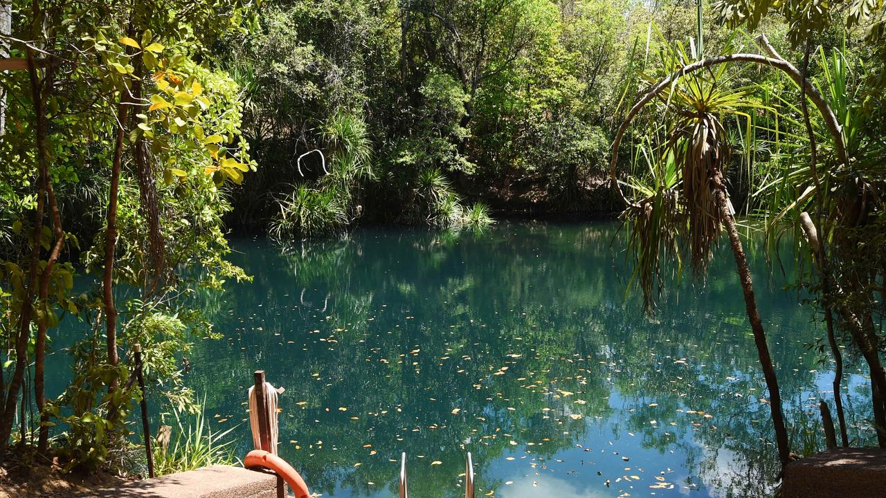 The Berry Springs Nature Park will reopen for swimming Friday afternoon after clearing all crocodile and environmental checks
