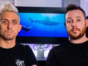 Ipswich filmmakers take shark net problem to world