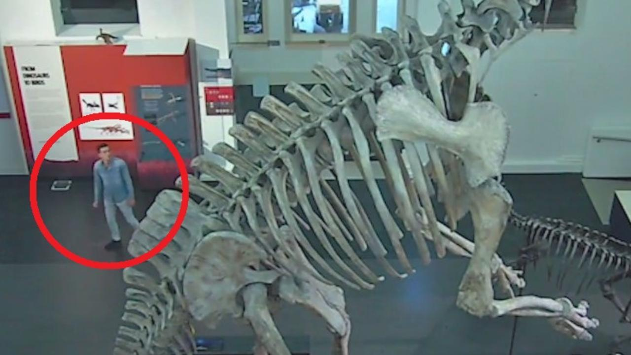 Police are searching for a man who broke into a Sydney museum at 1am, went on his own personal tour and did some strange things with a dinosaur.