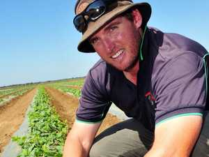 Grower eager for return to normality