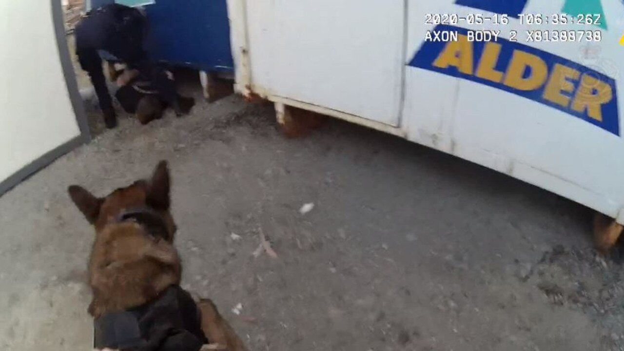 The Dog Squad tracked two men to a construction site.