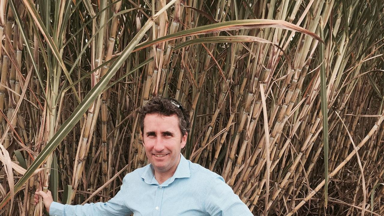 Canegrowers CEO Dan Galligan. Picture: Contributed