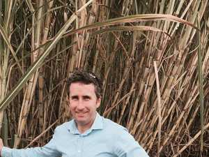 Queensland Sugar wants canegrower nominee