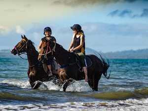 Cooler months could give Victorian born gelding a break
