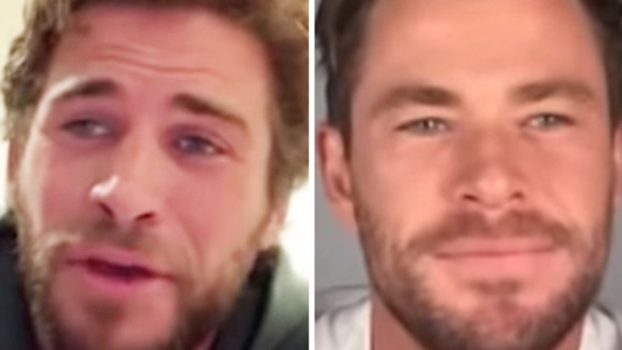 Liam and Chris Hemsworth appear together in the retelling of James And The Giant Peach.