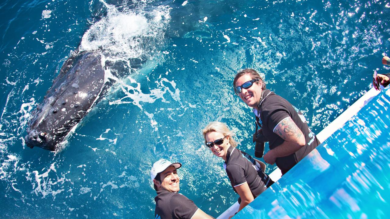 Tasman Venture staff Michael May, Vicki Neville and Alistair Allan think they have the best jobs in town. Photo Contributed