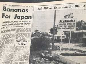 DEX FILES: A shopping mall in Grafton and bananas for Japan