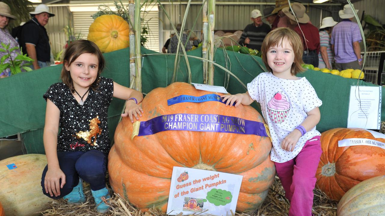 At the 2019 Fraser Coast Show, Lily, 7, and Mae, 4, Allen from Burrum Heads get up close to George May's champion pumpkin.