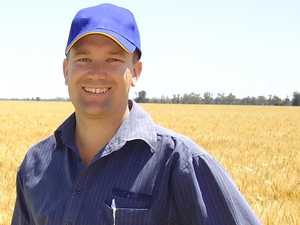 Farmers welcome best winter crop outlook in four years