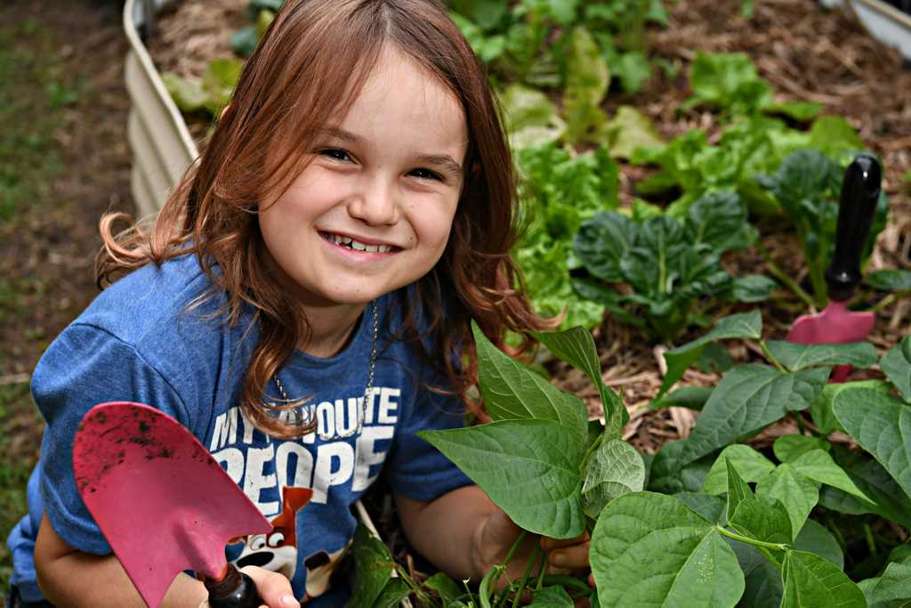 Image for sale: Jasper Sempf,7, has been growing vegetables for his family and the community during the lockdown.