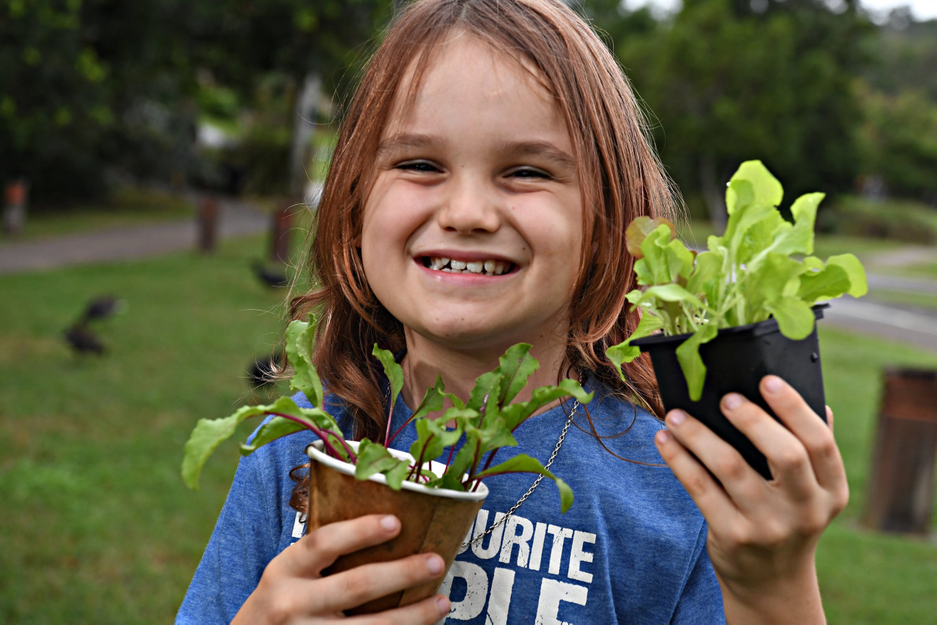 Jasper Sempf,7, has been growing vegetables for his family and the community during the lockdown.