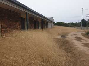 Tumbleweed sea swallowed a Darling Downs town