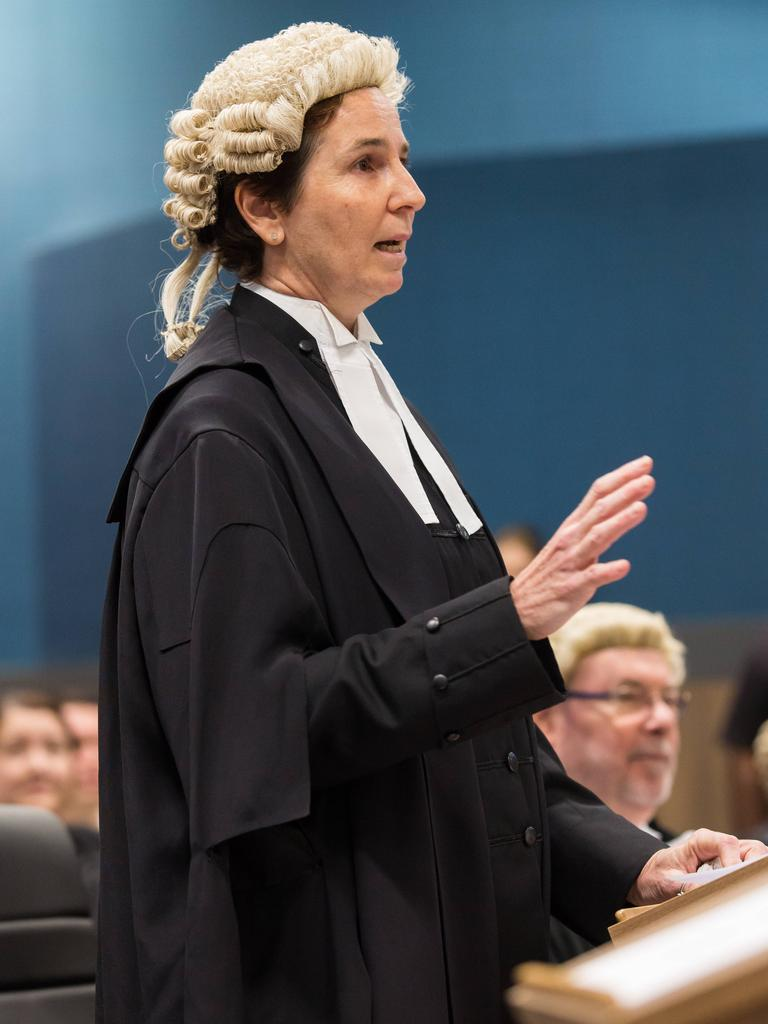 Solicitor General Sonia Brownhill speaking in court in 2017. Photo: Emma Murray
