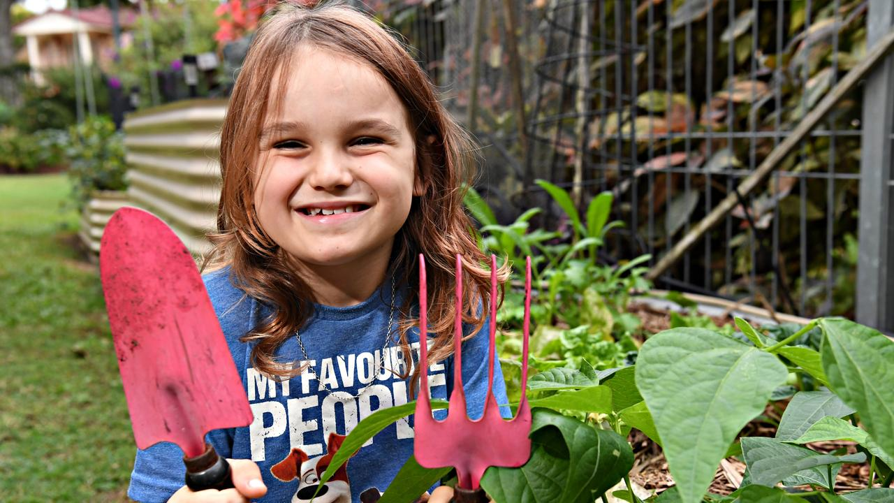 FRESH: Jasper Sempf, 7, has been growing vegetables for his family and the community during the lockdown. Picture: Warren Lynam