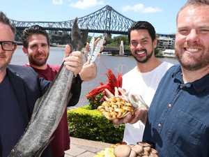 Bowen coral trout awarded Queensland's best seasonal catch