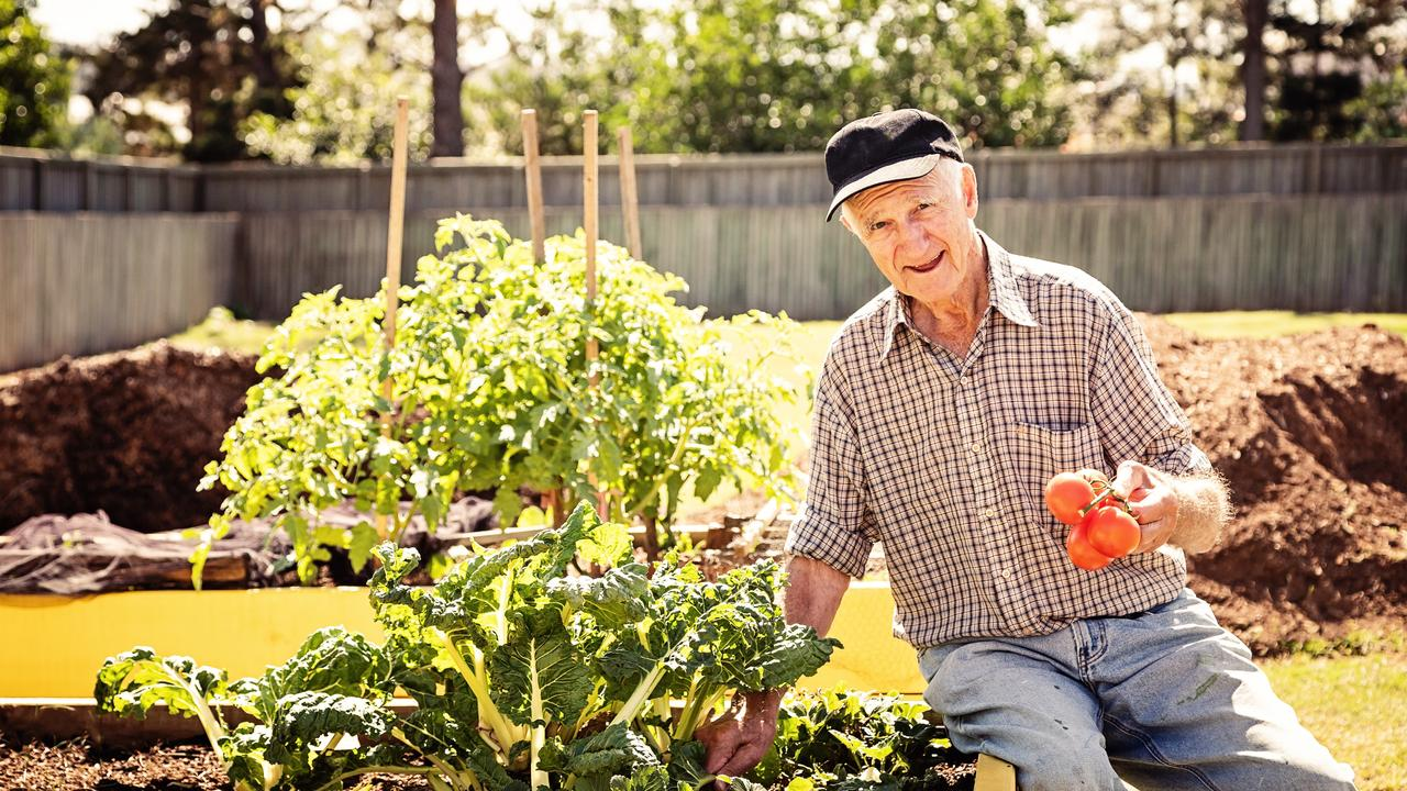Bolton Clarke Westhaven retirement village resident Elmore Lloyd shows off his green thumb skills at the facility's gardens, where he helps grow food and flowers.