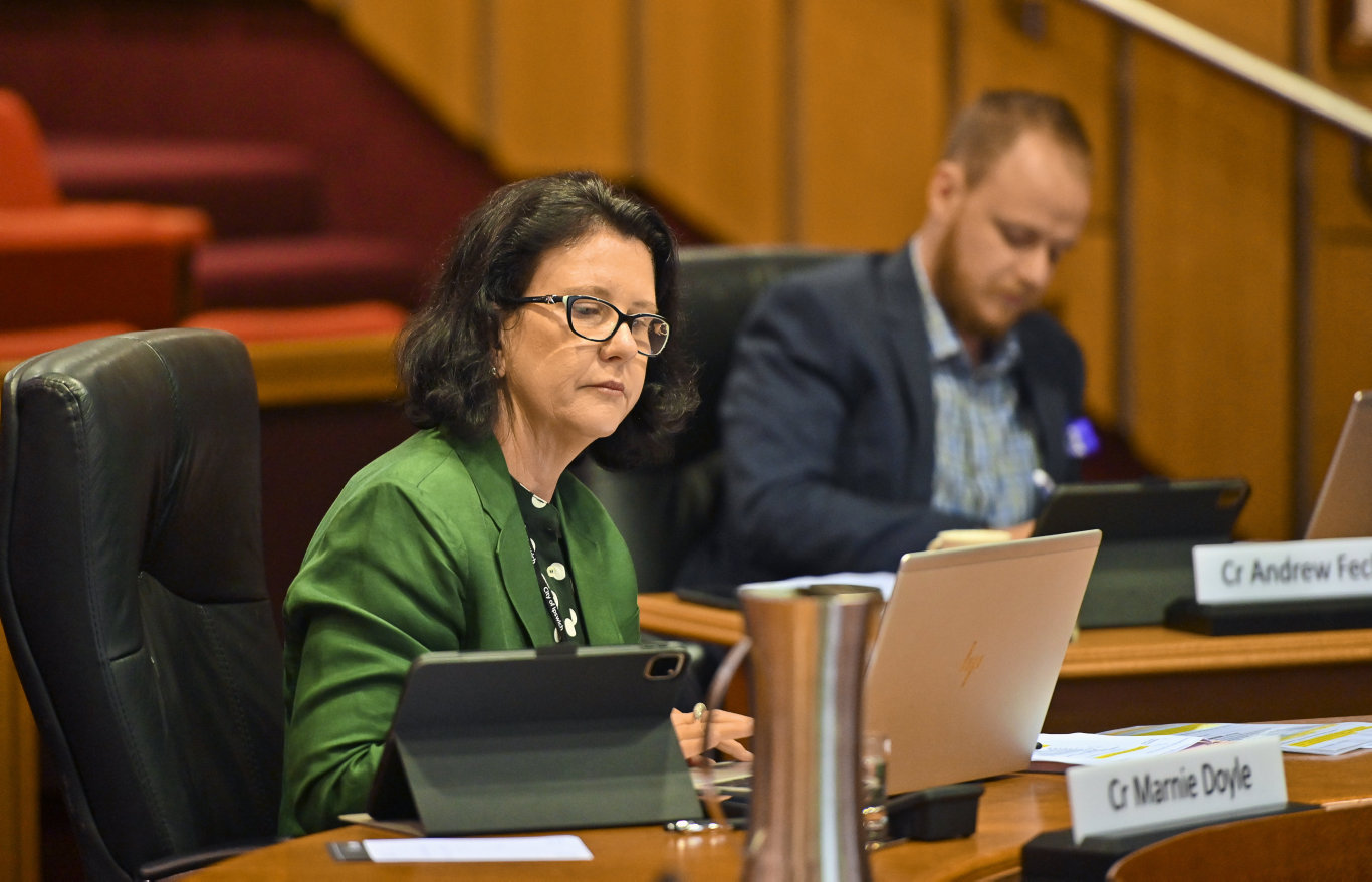 First Ipswich City Council meeting of 2020. Cr Marnie Doyle. Picture: Cordell Richardson