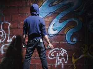 Huge spike in vandalism costs Burnett council $15K