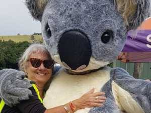 Koala campaigner in line for prestigious award