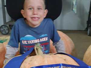 GOURDNESS GRACIOUS: 50kg+ pumpkin smashes competition