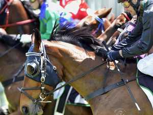 Gatton, Kilcoy races given green light, on monthly basis
