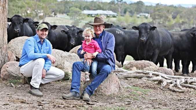 Beefed up: Angus stud hopeful of bettering tough 2019 sale