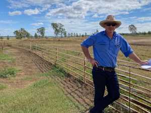 Grazier banking on growing industry with Allora feedlot