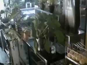 'Creepy': Owner devastated by break-in caught on CCTV