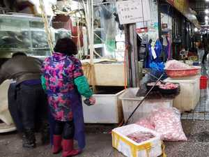 Wet markets an unfair virus 'victim'