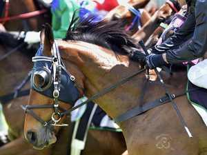 Highlands racing to return in June