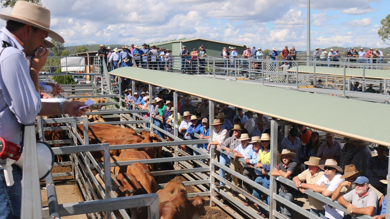 NEW HOME: The 2020 Ekka Prime Beef competition has found a new home at the Silverdale Saleyards. Picture: File
