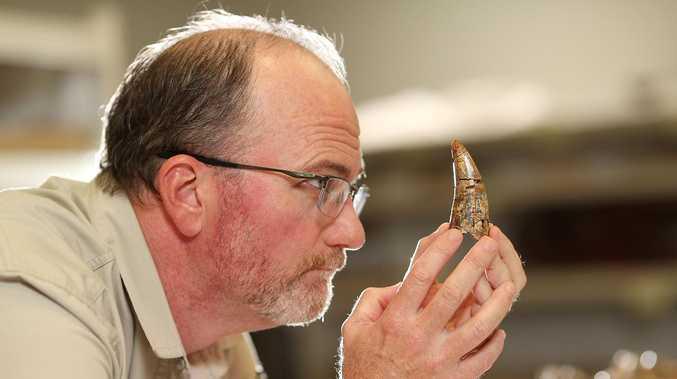 Why megafauna southwest of Mackay went extinct